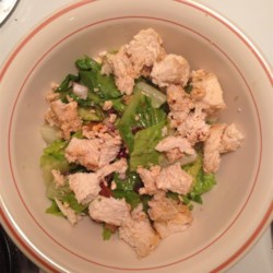 Middle Eastern Yogurt Chicken Recipe