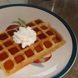 The Best Cinnamon Waffles!!!