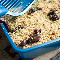 Photo of Kitty Litter Cake by Dee