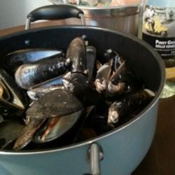 Moules en Sauce Recipe