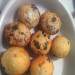 Chocolate Chip and Blueberry Muffins Recipe