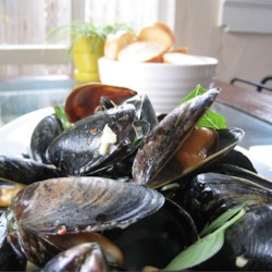 Thai Steamed Mussels Recipe
