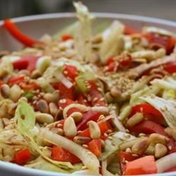 Red Pepper and Fennel Bulb Salad Recipe