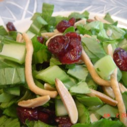 Yummy Bok Choy Salad Recipe