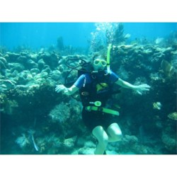 Scuba diving in Key largo