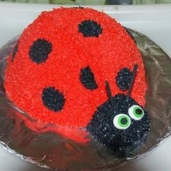 Lady Bug Cake with Buttercream Icing