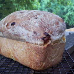 Image of Apricot Oat Bread, AllRecipes