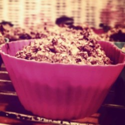 Roxie's Bran Muffins Recipe