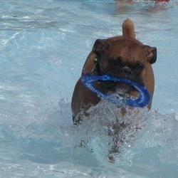 Gus at water park