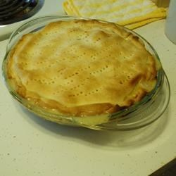 Terry's Favorite Easy Chicken Pie Recipe