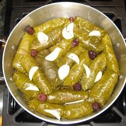 Grape Leaves Aleppo Recipe