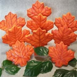 Glazed maple leaves