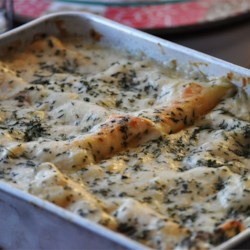White Cheese Chicken Lasagna