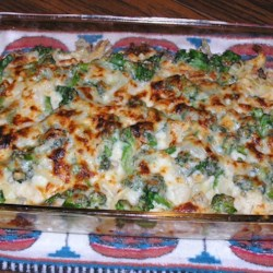Chicken or turkey broccoli casserole recipe