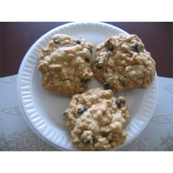 yogurt choc chip pb cookies