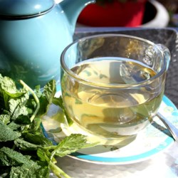 Lemon Verbena Mint Detox Tea