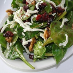 simple cranberry spinach salad printer friendly