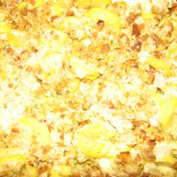 Absolutely Delicious Squash Casserole