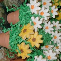 Sugarplums Daisy Bouquets