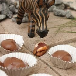TaffyTree Pecan Turtles