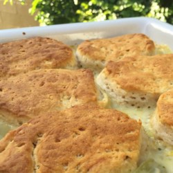 Camping recipes allrecipes campfire chicken pot pie recipe this recipe uses prepared biscuit dough to top a creamy forumfinder Gallery