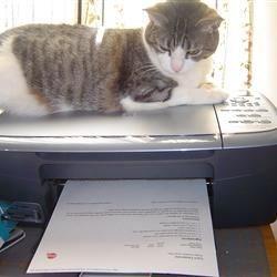 Printout's ready Mom!