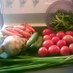 My Garden Bounty