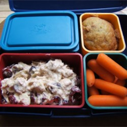 Tuna Salad with Cranberries in hubby's Laptop Lunchbox
