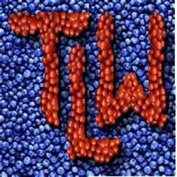 TLW03
