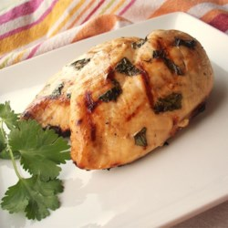 Beer Lime Grilled Chicken Recipe