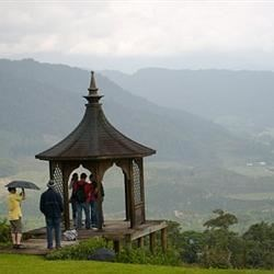 Plantation Tirazu Costa Rica