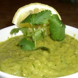 Roasted Spicy Salsa Verde