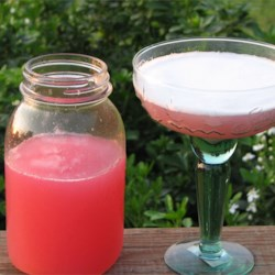 Rhubarb Margarita Recipe