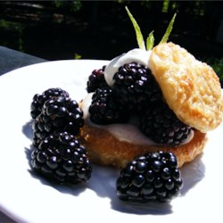 Blackberry Puff Pastry Tarts Recipe