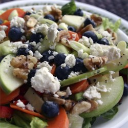 Rainbow Salad with Lemon Poppyseed Dressing Recipe