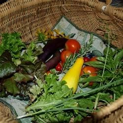 The garden....it's whats for dinner!