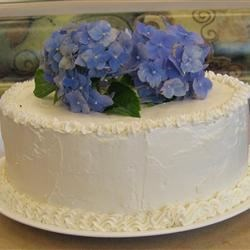 practice cake for wedding