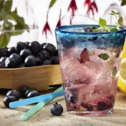 Blueberry Stevia Lemonade