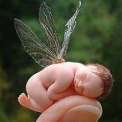 Fairy Mama