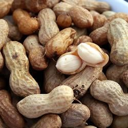 Photo of Boiled Peanuts by Thelma