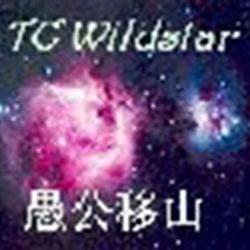 foolish wildstar