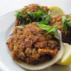 quahog clams stuffed quahogs recipe and baked stuffed quahogs the ...