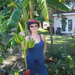 The Green Goddess with Finger Banana's