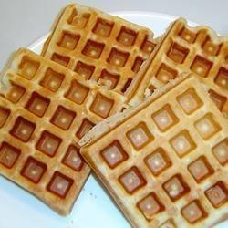 Waffles I*
