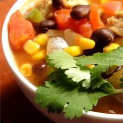 Chipotle Chicken Soup Recipe