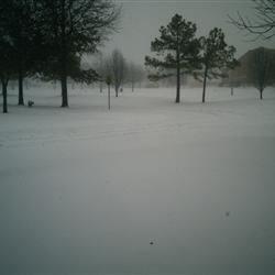 2011 storm