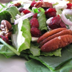 Cranberry Pecan Salad Recipe