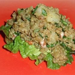 Photo of Fruity Curried Lentil Salad by Candi Waldrop Morgan