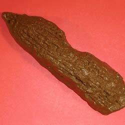 Cat Poop Cookies III Recipe