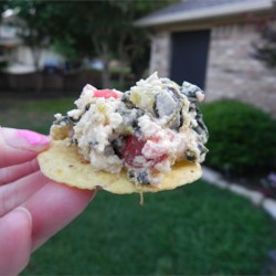 Spicy South Of The Border Spinach Cheese Dip Recipe
